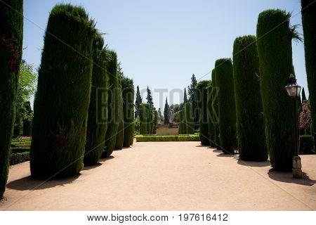 Jardins De L'alcazar De Cordoue, Andalousie, Cordoba, Spain, Europe