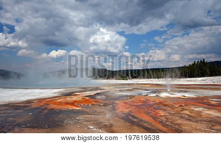 Black Sand Geyser Basin in Yellowstone National Park in Wyoming U S A