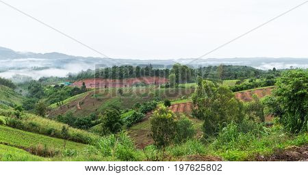 Landscape of Khao Kho district petchabun province Thailand agricultural in deforestion area and landuse concept
