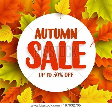 Autumn sale vector banner with maple leaves background and white circle for text for fall season shopping discount promotion. Vector illustration.