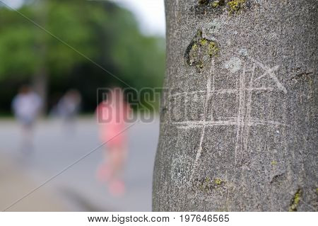 tic-tac-toe drawing on tree on park background