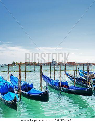 Gondolas Parked On The Venetian Lagoon In Venice, Italy