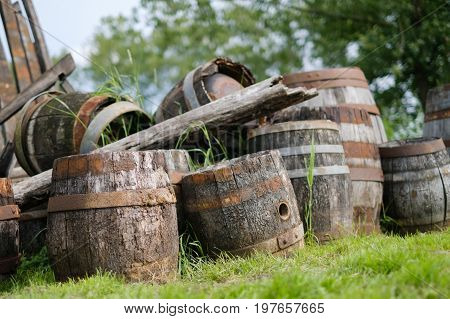 Old wooden casks at a farmhouse on green grass