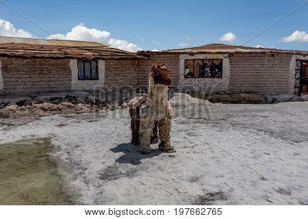 Salt Hotel at Salar de Uyuni Bolivia