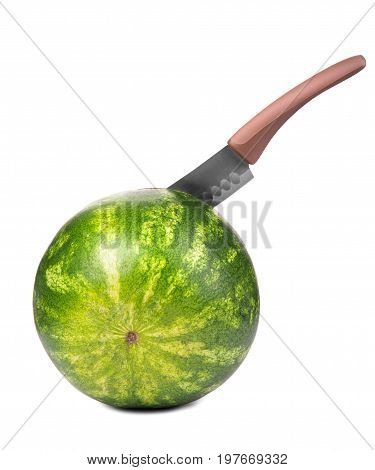 A  macro of a stripped round firm watremelon stabbed with a big  knife. A big  steel  knife is cutting a ripe round  greenish watermelon. The watermelon is on the white background.