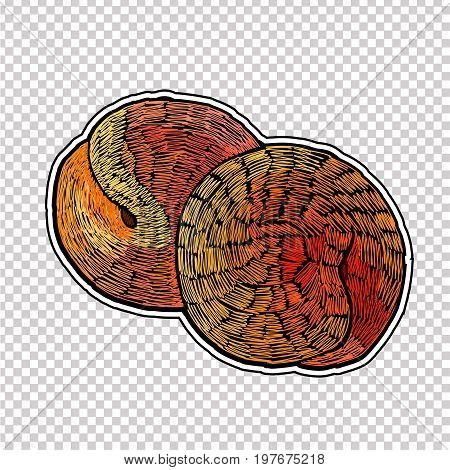 Embroidery peaches. Classic embroidery fruit peaches . Template for clothes textiles t-shirt design