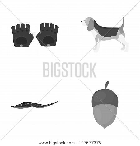 business, leisure, entertainment and other  icon in monochrome style.nut, food, animals, icons in set collection