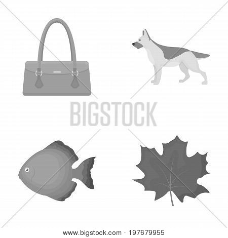 trade, business, leisure and other  icon in monochrome style., Maple, oxygen, ecology icons in set collection
