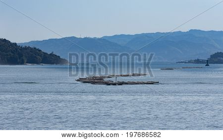 Oyster rafts in Hiroshima Bay the Inland Sea of Japan with hazy hills and mountains in the background.