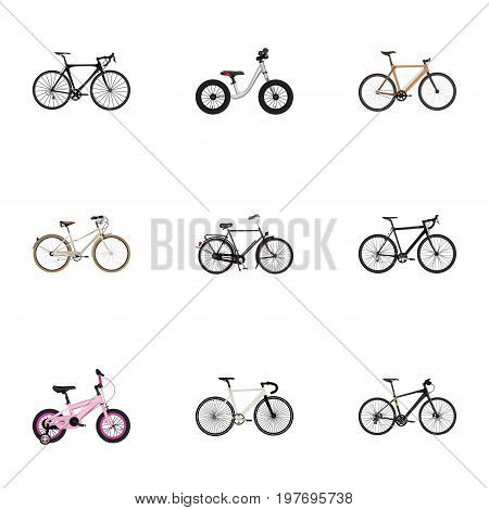 Realistic Old, Timbered, Hybrid Velocipede And Other Vector Elements