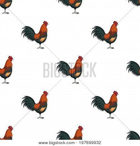 Home cock.Animals single icon in cartoon style vector symbol stock illustration .