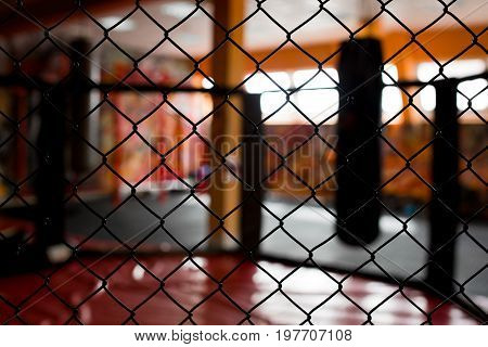 net in gym in focus. kickboxing exercise place.