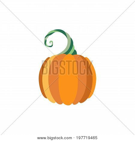 Vector flat pumpkin icon isolated illustration on a white background. Cartoon style vegetable, symbol of thanksgiving halloween autumn , harvest. Natural organic food nutrition, healthy eating element