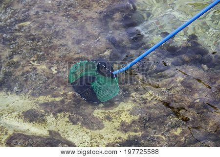 Fishing With A Landing Net 2