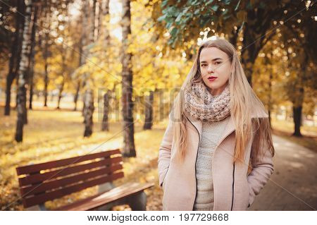 portrait of young beautiful woman walking in stylish warm outfit in sunny autumn day in park wearing pink coat and knitted snood. Casual lifestyle in the city