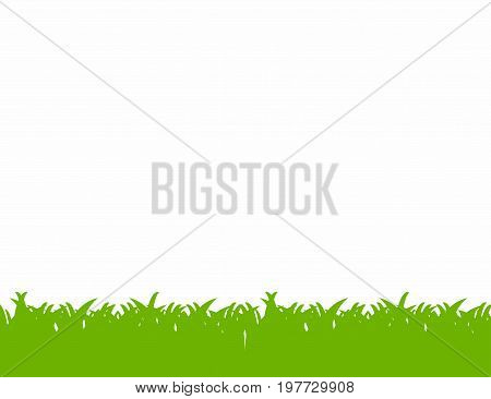 Green grass border isolated on white background. Vector
