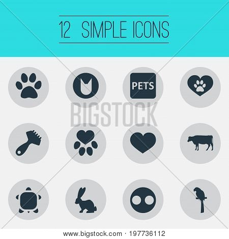 Elements Wildlife, Hair Brush, Kitten And Other Synonyms Pork, Banner And Snout.  Vector Illustration Set Of Simple Fauna Icons.