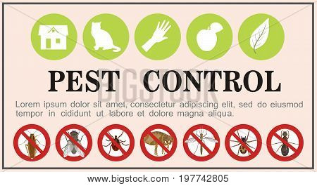 Vector banner with insect icons of pests of a cockroach and a tick, fleas and a spider, a mosquito and a fly, an ant on a light background with an inscription. Service of insect pest control in houses and outdoor garden areas.