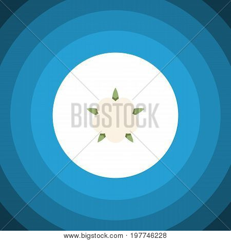 Bud Vector Element Can Be Used For Flower, Cotton, Bud Design Concept.  Isolated Flower Flat Icon.
