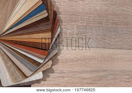 A Large Set Of Samples Of Wood Veneer