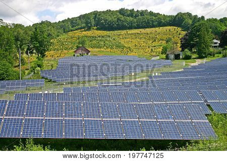 a rural solar farm with a red barn and a field of yellow flowers in the background