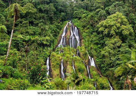 Closeup view of dense green jungle and the waterfall at Santa Rosa de Cabal Colombia