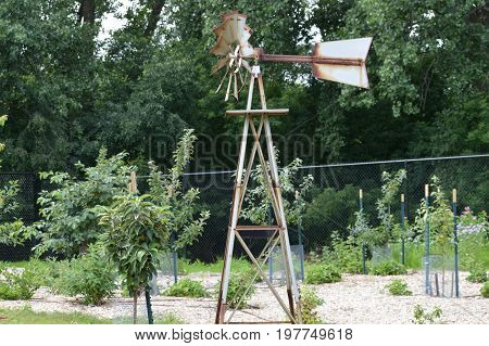 A weather vane in the orchard during summer
