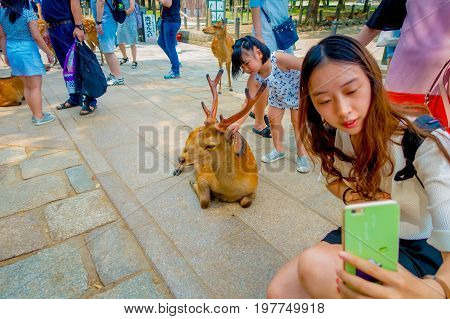 Nara, Japan - July 26, 2017: Close up of unidentified woman taking a selfie of a wild deer in Nara, Japan. Nara is a major tourism destination in Japan - former capita city and currently UNESCO World Heritage Site.