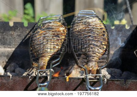 Fish grill / Toasted fish / Fried fish