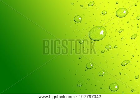 Green fresh and Yellow water drops template background design
