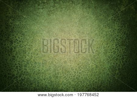 Green abstract texture background with bright spotlight in grunge style for text, image or presentation