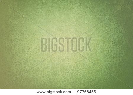 Light green abstract texture background in grunge style for text, image or presentation  abstractagedantiquearchitecturebackdropbackgroundbasementbrownbuildingbumpyclassiccoarsecolorconstructioncraggydarkdecorationdesigndetaildirtdots patterndramaemptyexh