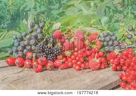 Berries On A Table Among Green Leaves