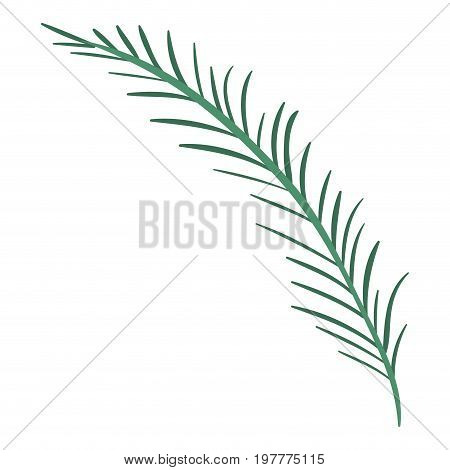 white background with colorful silhouette of branch with linear leaves vector illustration