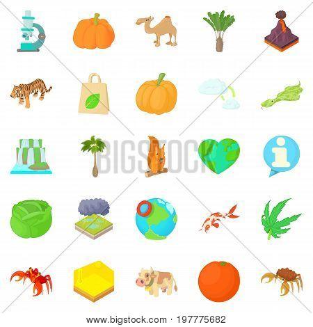 Island icons set. Cartoon set of 25 island vector icons for web isolated on white background