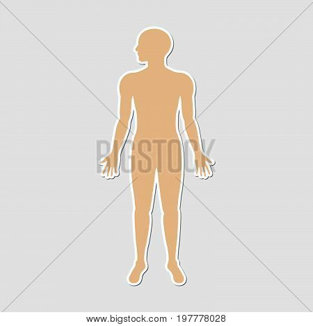 Human body paper style sticker with skin color for information use medical health science business technology and multi-purpose vector illustration