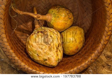 Annona scaly sugar apple fruit. Annona cherimola fruit. Organic custard apple sweetsop fruit. Organic fruit concept. Selective focus.