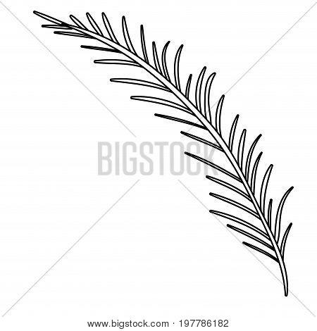 white background with monochrome silhouette of branch with linear leaves vector illustration