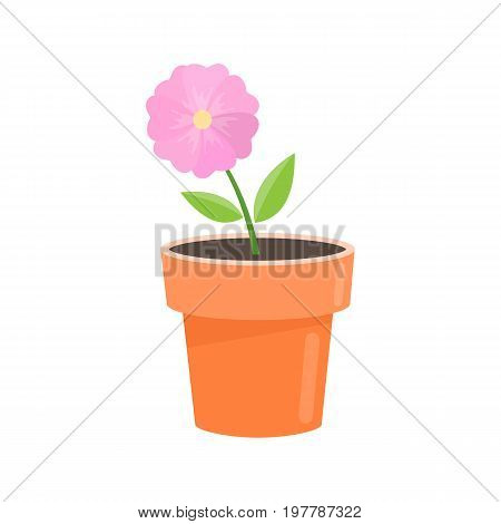 Potted flower in a pot colorful illustration. Vector