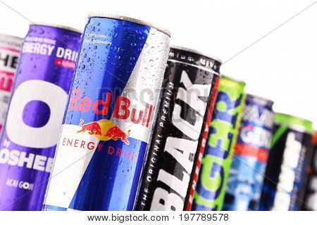 Cans Of Assorted Global Energy Drink Products
