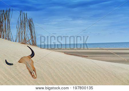 Beach impressions interplay of beach sea and sky