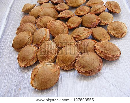 Apricot kernels, raw material of the pharmaceutical industry pictures of bitter apricot kernel,