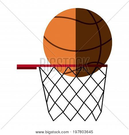 basketball ball basket sport equipment competition sphere play game vector illustration