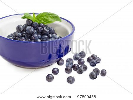 Fragment of the blue bowl with a dessert made of a fresh blueberries and sweetened condensed milk and decorated with basil twig and separately several berries beside on a white background