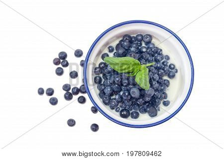 Top view of the blue bowl with dessert made of the fresh blueberries and sweetened condensed milk decorated with basil leaf against of several berries beside on a white background