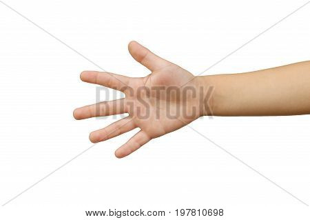 closeup, human, isolated, wrist, thumb, white, business, concept, sign, adult, arm, finger, symbol, male, open, people, clipping, one, caucasian, female, number, girl, young, woman, person, gesture, help, empty, paper, showing, skin, five, background, pat