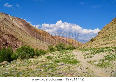Ravine and path between colorful hills of Altai mountains. Altay Republic Russia.