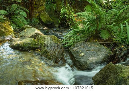 River in full flowing between the rocks and dense vegetation
