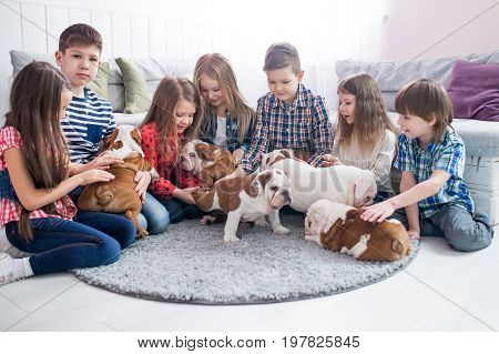 A group of children playing with puppies bulldog in the nursery.