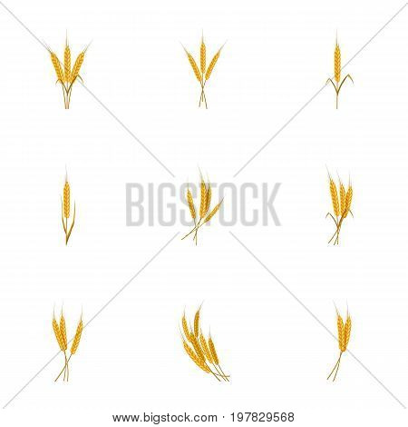 Different rye icons set. Cartoon set of 9 different rye vector icons for web isolated on white background